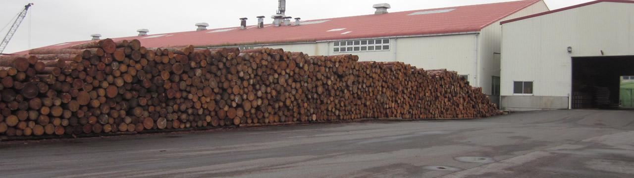 材木合板製造